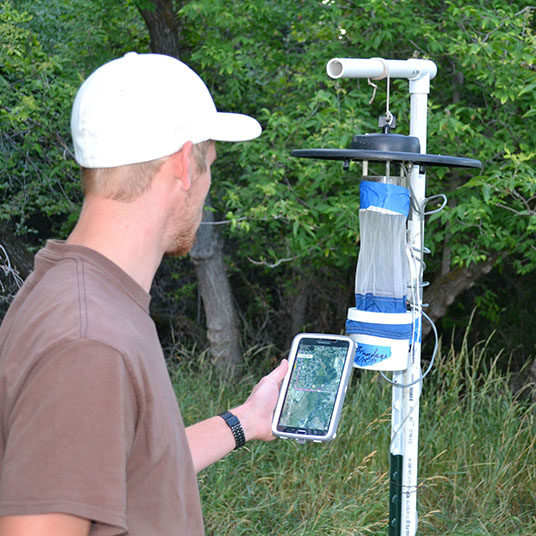 Trap monitoring for mosquito control
