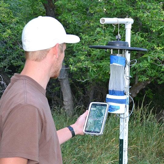 mosquito-trap-monitoring